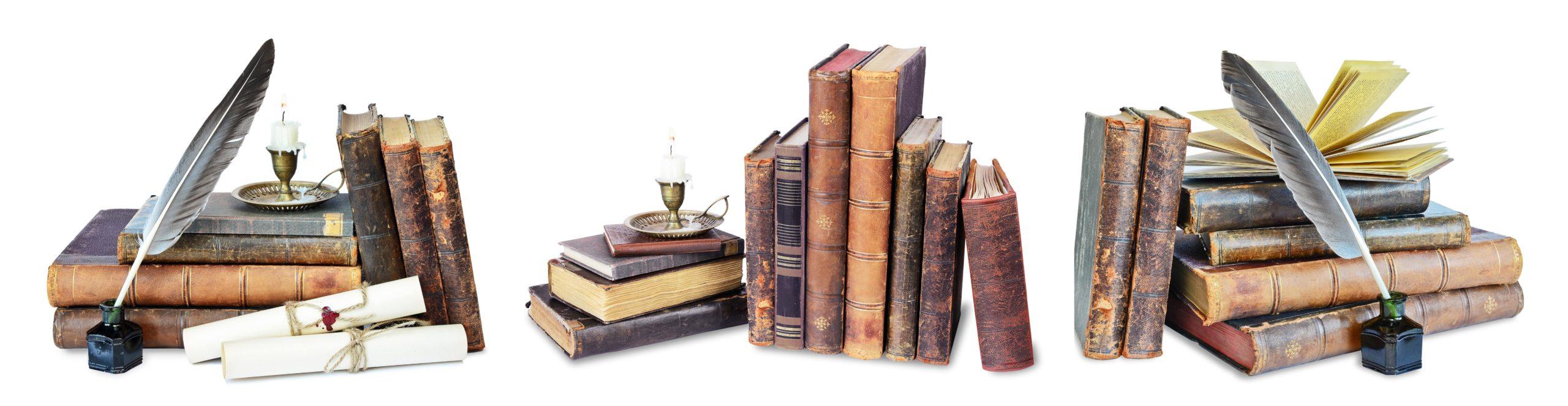 Les livres de Luc Bodin