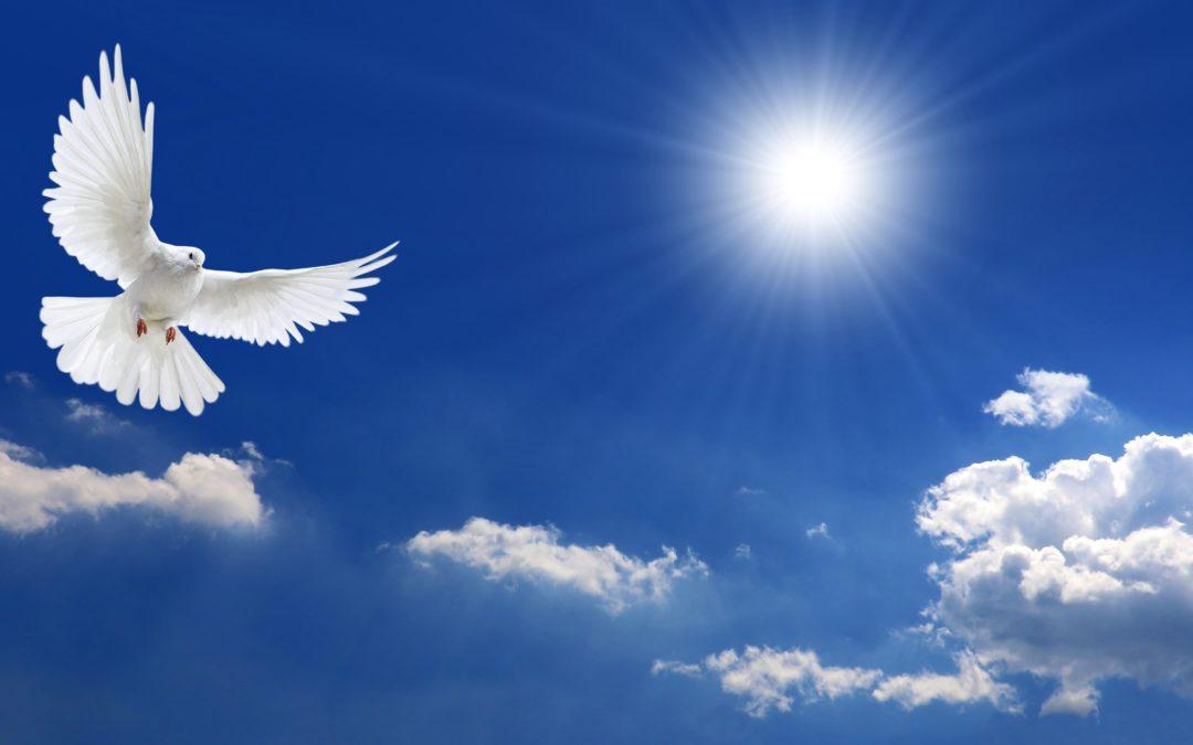 La pandémie Covid-19 sous l'angle de la spiritualité