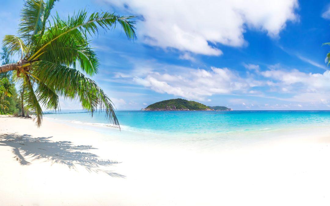L'esprit Aloha pour développer une vie saine et équilibrée sur son chemin de vie