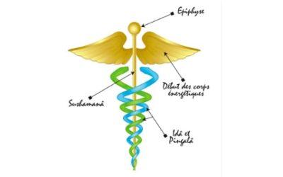 Le Caducée, un symbole énergétique